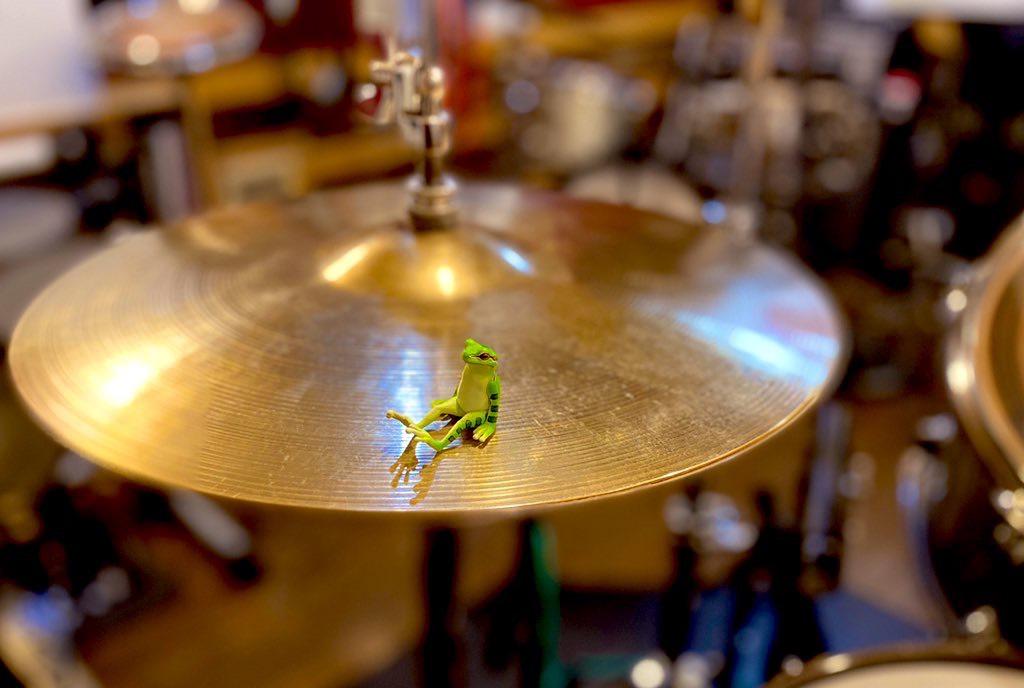 楽器の上達に一番必要なもの!お答えします。